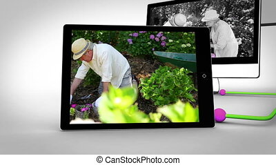 Retired couple gardening - Animation of retired couple...