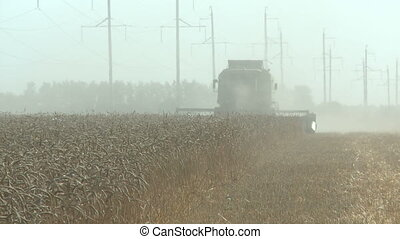 working harvesting combine in the dust field