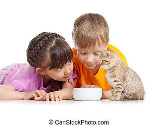 Menino, menina, crianças, jovem, gato