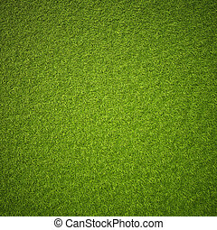grass - Green grass field background texture.