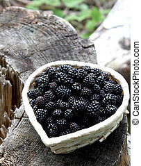 blackberry basket - little basket with fresh blackberries...