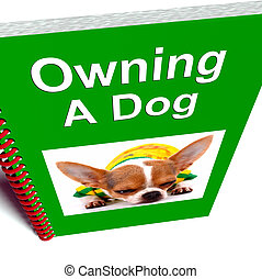 Owning A Dog
