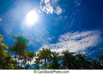 Blue sky with white cloud. Tourism.