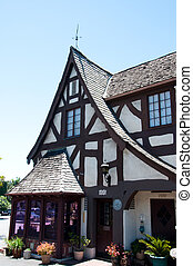 Beautifully restored old craftsman style home in European...