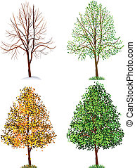 Tree - Vector illustration - tree, four seasons