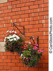 Hanging baskets overflow with flowers bracketed on a...