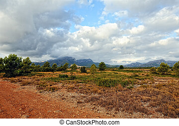 Suumer landscape with rural road in Spain.