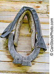Horse harness hang on old homestead log house wall - Horse...