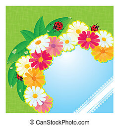 ladybirds and daisies - summer card