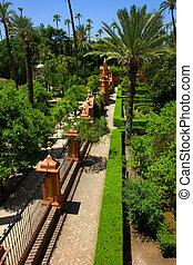 Garden of Alcazar Palace, Seville - Garden of Alcazar Palace...