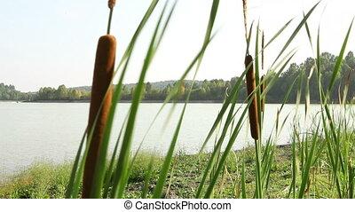 Jetski in Siberian river 2