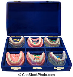 Dentures ToGo - Set of Six Different Color Denture Models