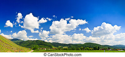 Sumer landscape - green fields, the blue sky