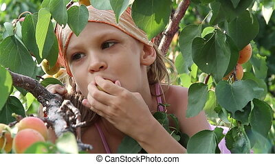 Girl eats apricots sitting in a tree