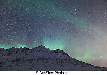 Northern lights (Aurora Borealis) - A high resolution image...