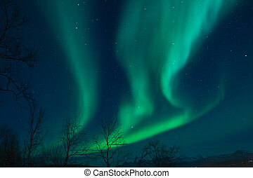 Aurora Borealis Northern lights - A high resolution image of...