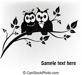 Two black and white on a black owls