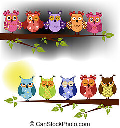 Family of owls sat on a tree branch at night and day