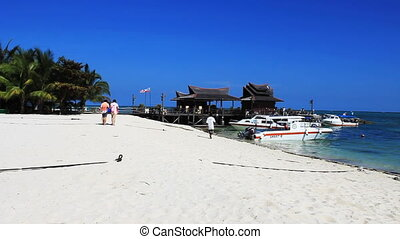 Mabul island - Tropical Paradise at Mabul island with palms...