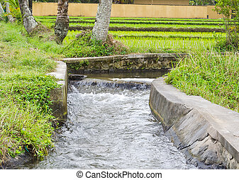 irrigation canal in Bali, indonesia