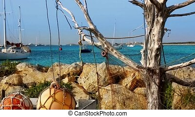 Formentera La Sabina with dry tree hanging fishermen nets...