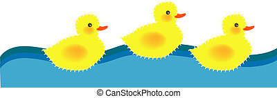 ducky - vector illustration for three ducky are swimming,...