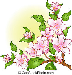 Blossoming branch with pink a flowers on a white background