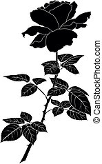 Flower rose, silhouette - Flower rose, petals and leaves,...