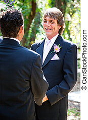 Gay Marriage - Handsome Groom