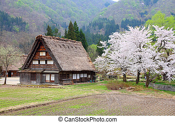 Shirakawa-go, Japan - Japan - house with thatched roof and...