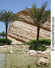 Rock pool from Al Bandar - Muscat