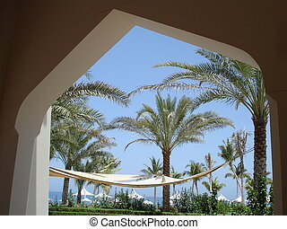 Looking through an arch at palms - A stunning view through a...