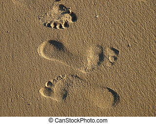 footprints in the wet sand