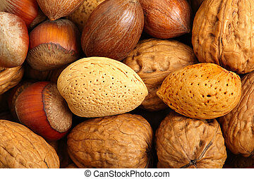 Scattered nuts - 2