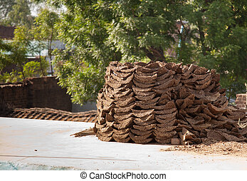 Cow dung-the best natural fertilise - Collection of cow and...