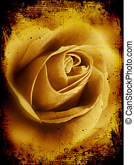 Grunge rose - Detailed grunge background with rose image