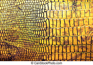 reptile skin texture/background