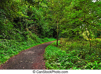 Green Mile - The pathway leading to the Swiss Cottage in...