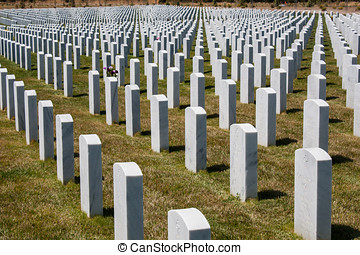 Veterans Day Memorial Cemetery - Fallen soldiers at the...