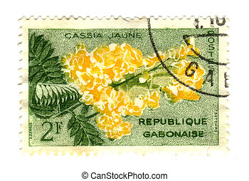 Gobon stamp with flower - cassia jaune