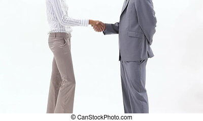 Two business people shaking hands - Video of two business...