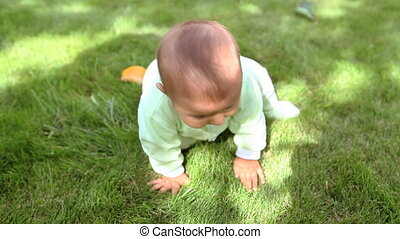 Infant - Happy small boy sitting on the green grass