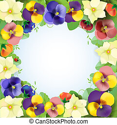 Floral background, colorful pansies flowers