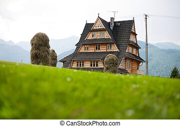 Cabin in the Mountains - A wooden house at the foot of the...