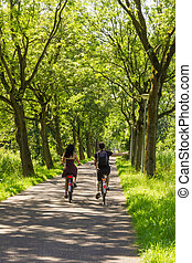 Couple riding bicycle along trees alley
