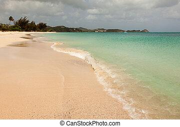 Tropical Beach with Overcast Sky - Tropical Sandy Caribbean...