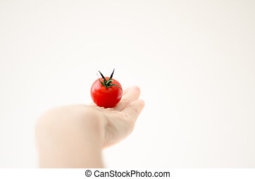Cherry Tomatoe on Womans Hand - Some cherry tomato on the...