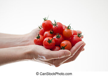 Cherry Tomatoes in Womans Hands - Some cherry tomatoes in a...