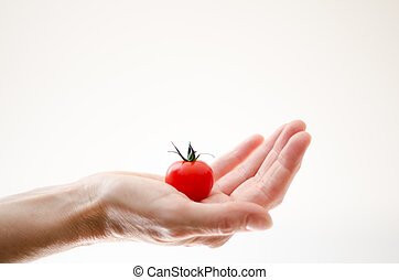 Cherry Tomatoe in Womans Hand - Some cherry tomato in a...