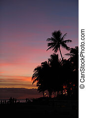 Sunset silhouettes on Waikiki Beach, Oahu, Hawaii - Palm...